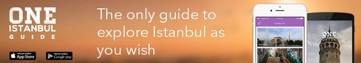 oneistanbul guide